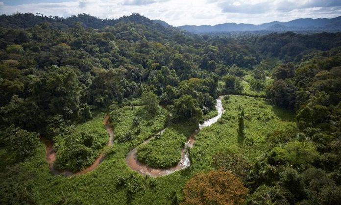 Cité perdue du Dieu Singe, Cité Blanche, Honduras