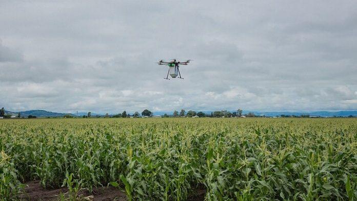 Michael Godfrey, drone, agriculture biologique