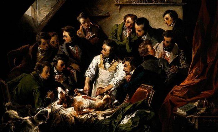 Vivisection, débat commission Européenne