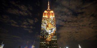animaux en danger, Empire State Building