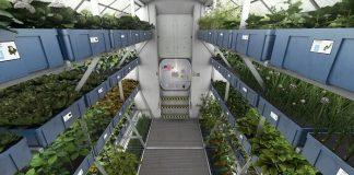 culture, récolte, NASA