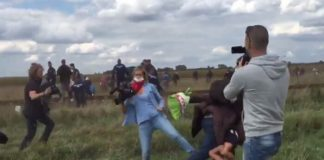 camerawoman, Hongrie, migrants