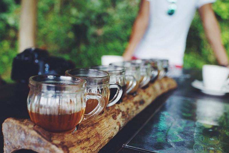 Tasses de café kopi luwak