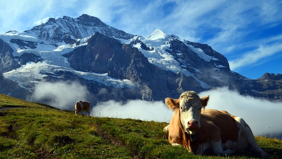 Suisse, pays le plus innovant